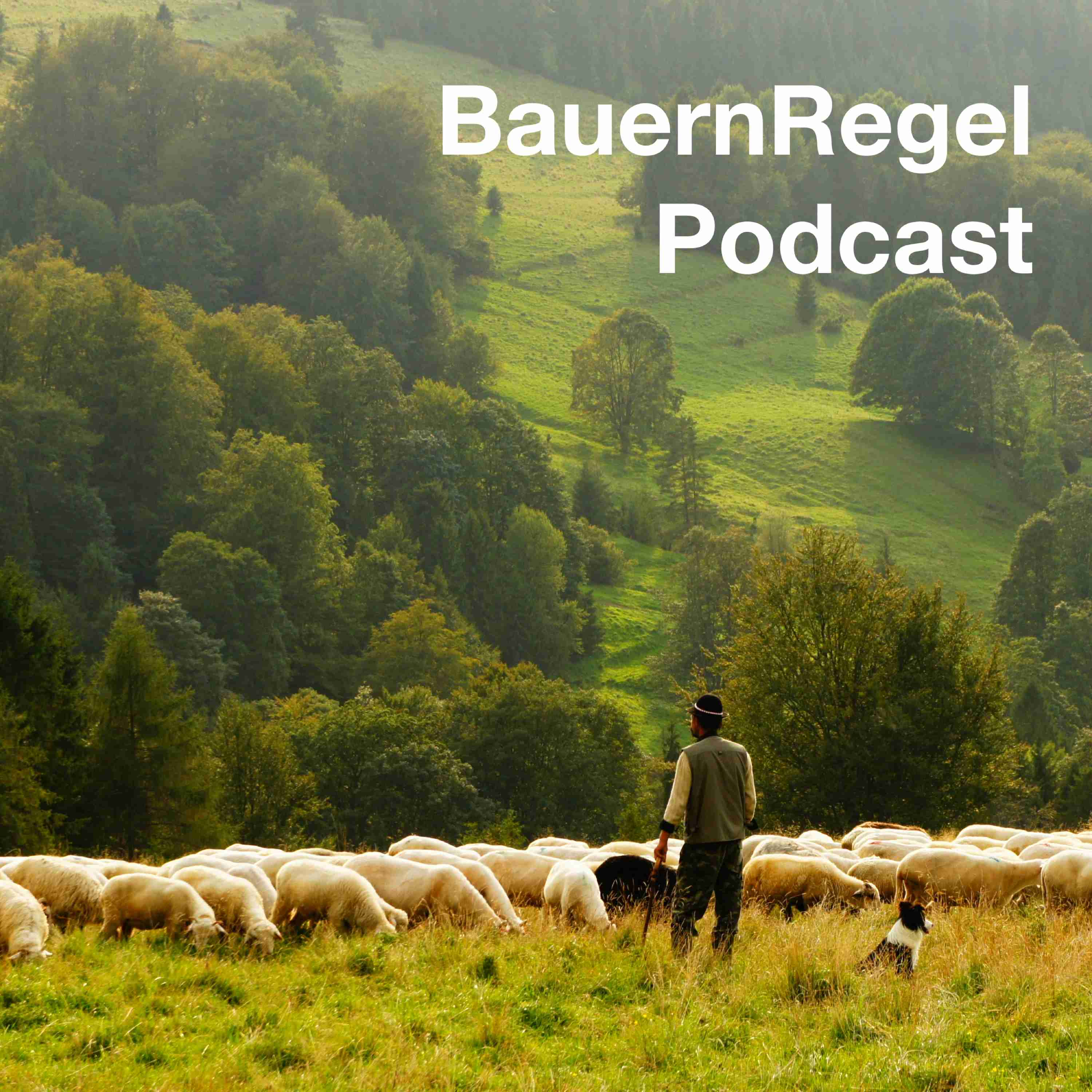 BauernRegel Podcast
